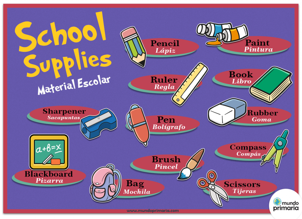 Infografía educativa del material escolar en inglés