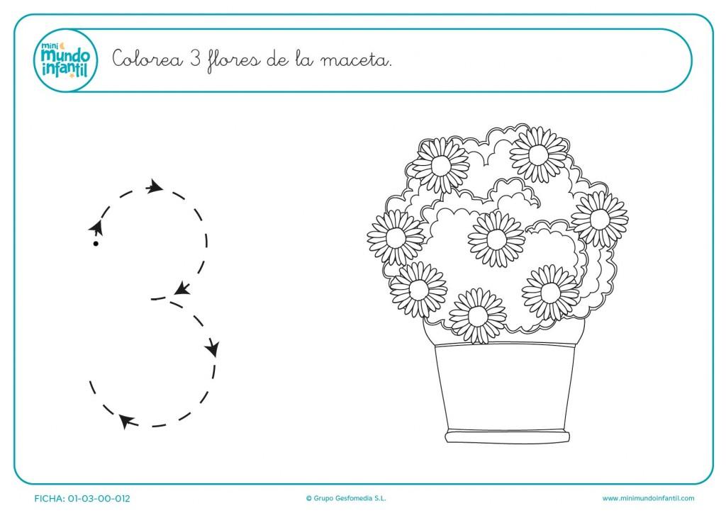 Elegir y colorear 3 flores de la maceta