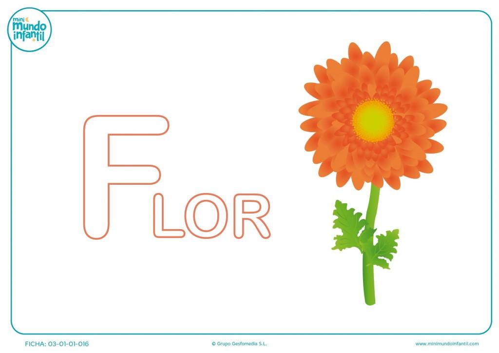 Letra F mayúscula de flor para pintar