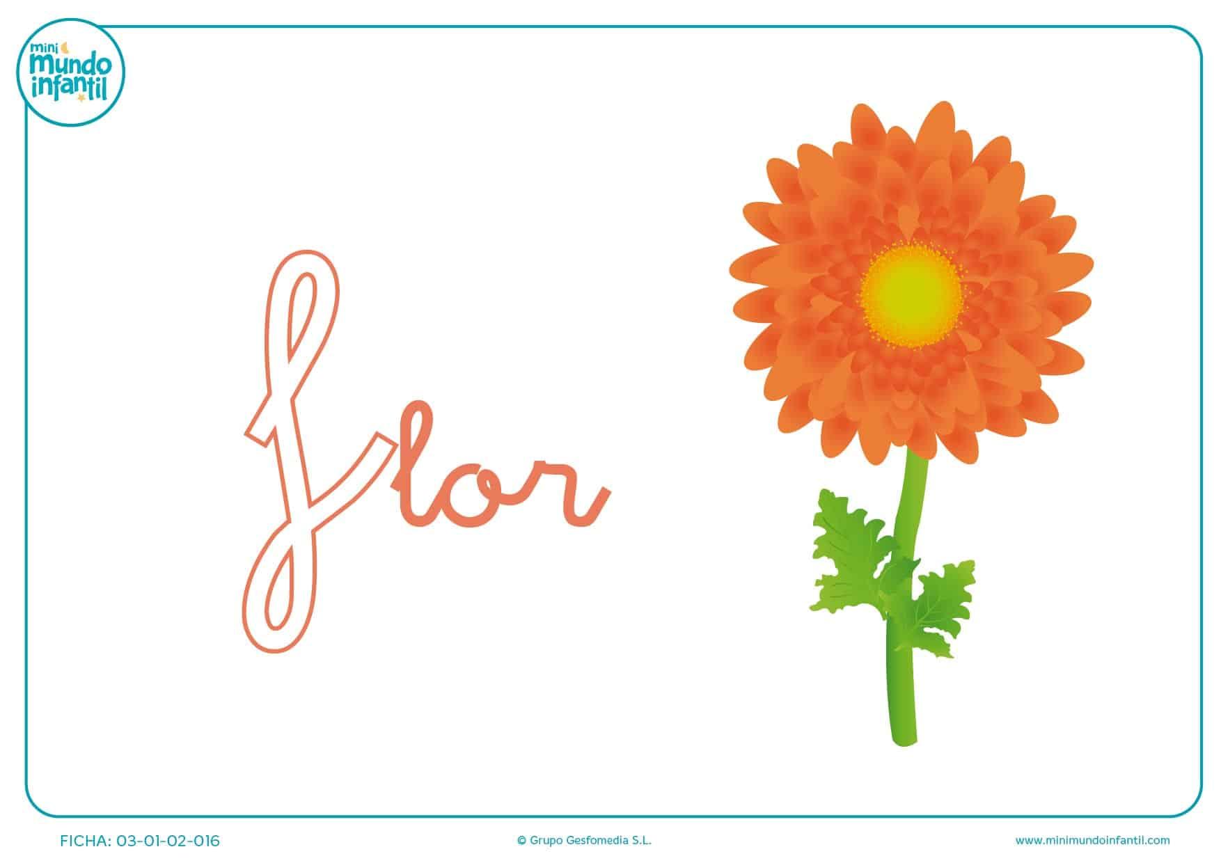 Letra F minúscula de flor para completar