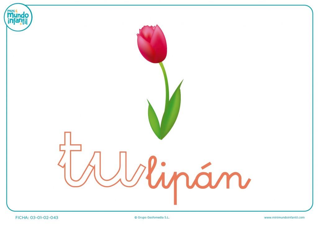 Sílaba TU minúscula de tulipán para pintar