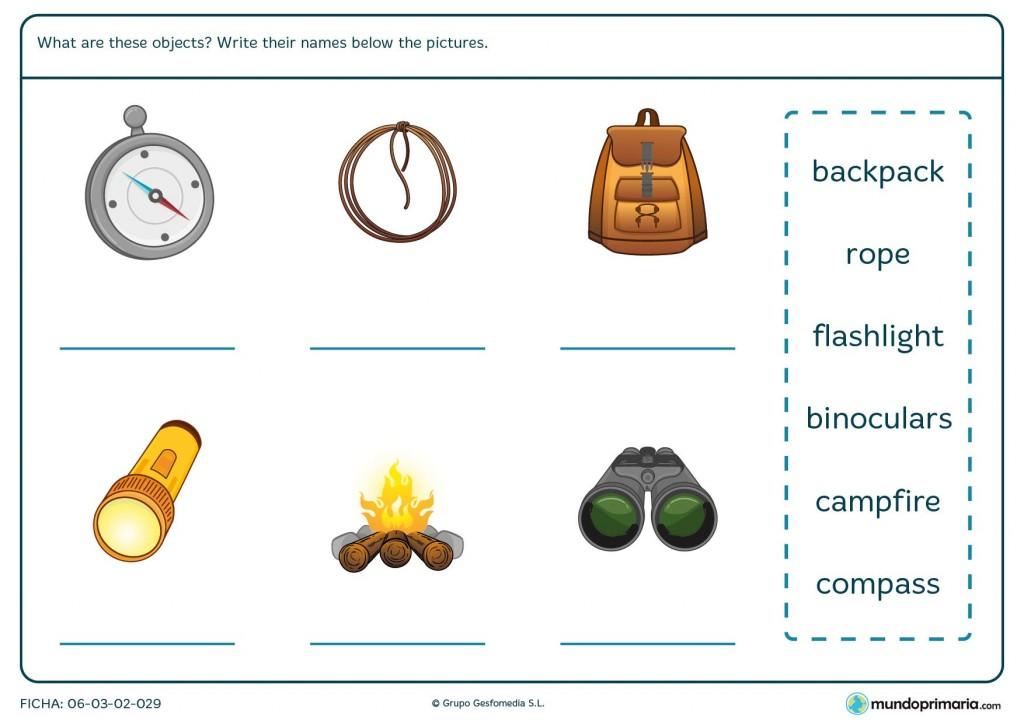 Ficha de vocabulario de camping en inglés para primaria
