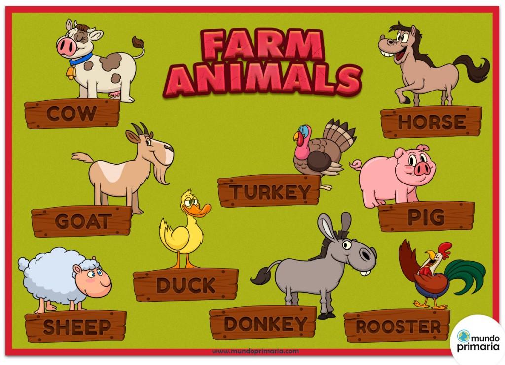 Infografía educativa de los animales de granja