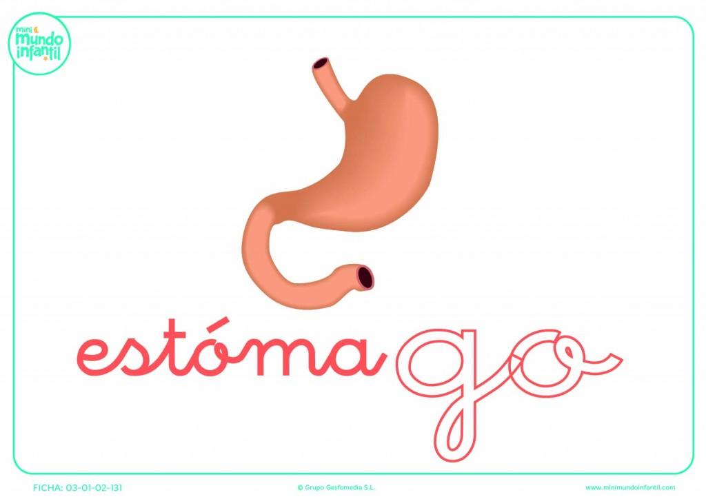 Completar la sílaba GO minúscula de estómago