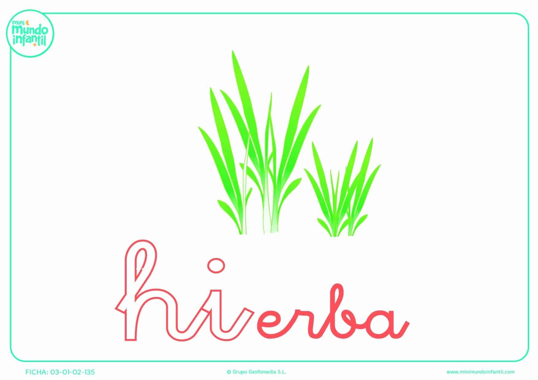 Rellenar la sílaba HI de hierba en minúsculas