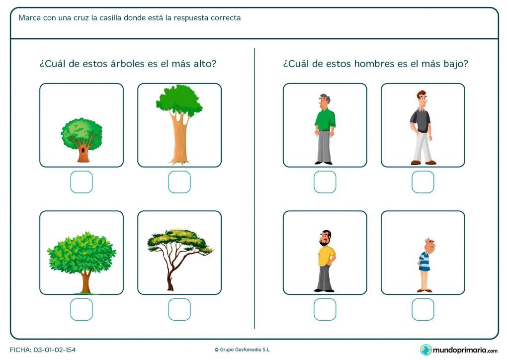 Ficha de elegir y comparar imágenes para niños de Primaria