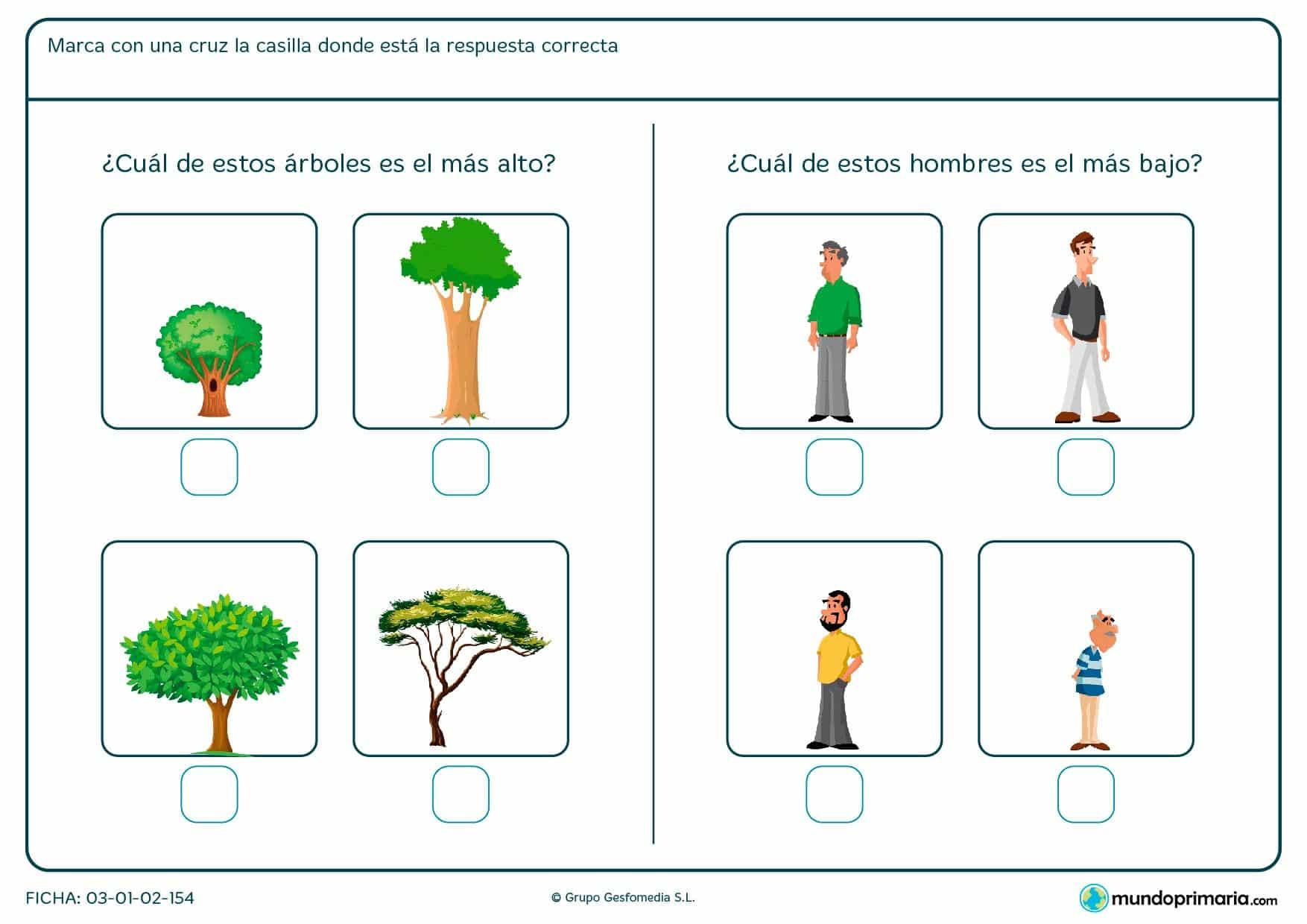¿Qué hombre es más bajo? ¿Qué arbol es el más alto? Presta atención a las imágenes y marca la casilla correcta.