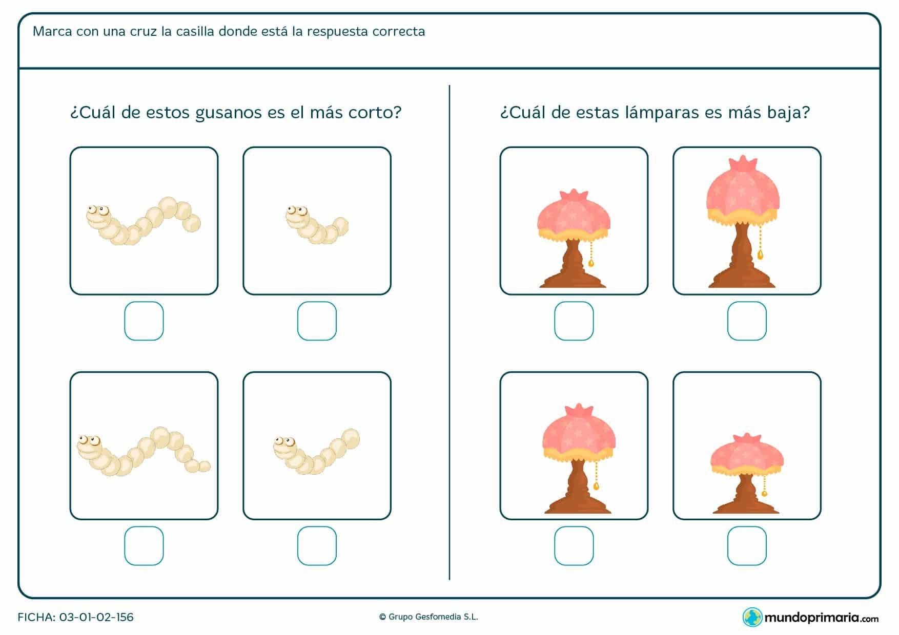 ¿Cuál es el gusano más corto? ¿Qué lámpara es más baja? Compara las imágenes y señala la correcta.