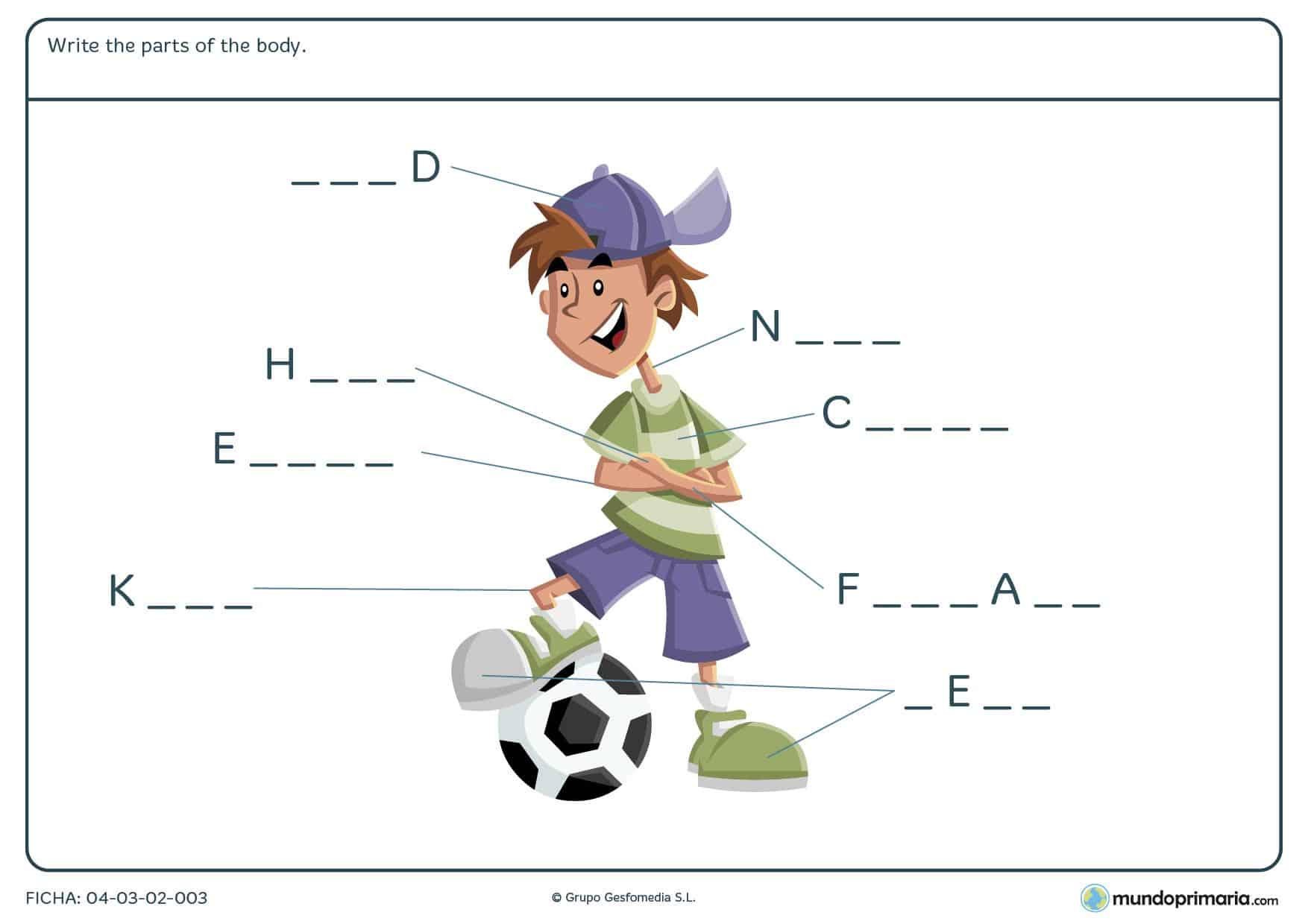 Rellena los huecos con las partes del cuerpo del chico en inglés
