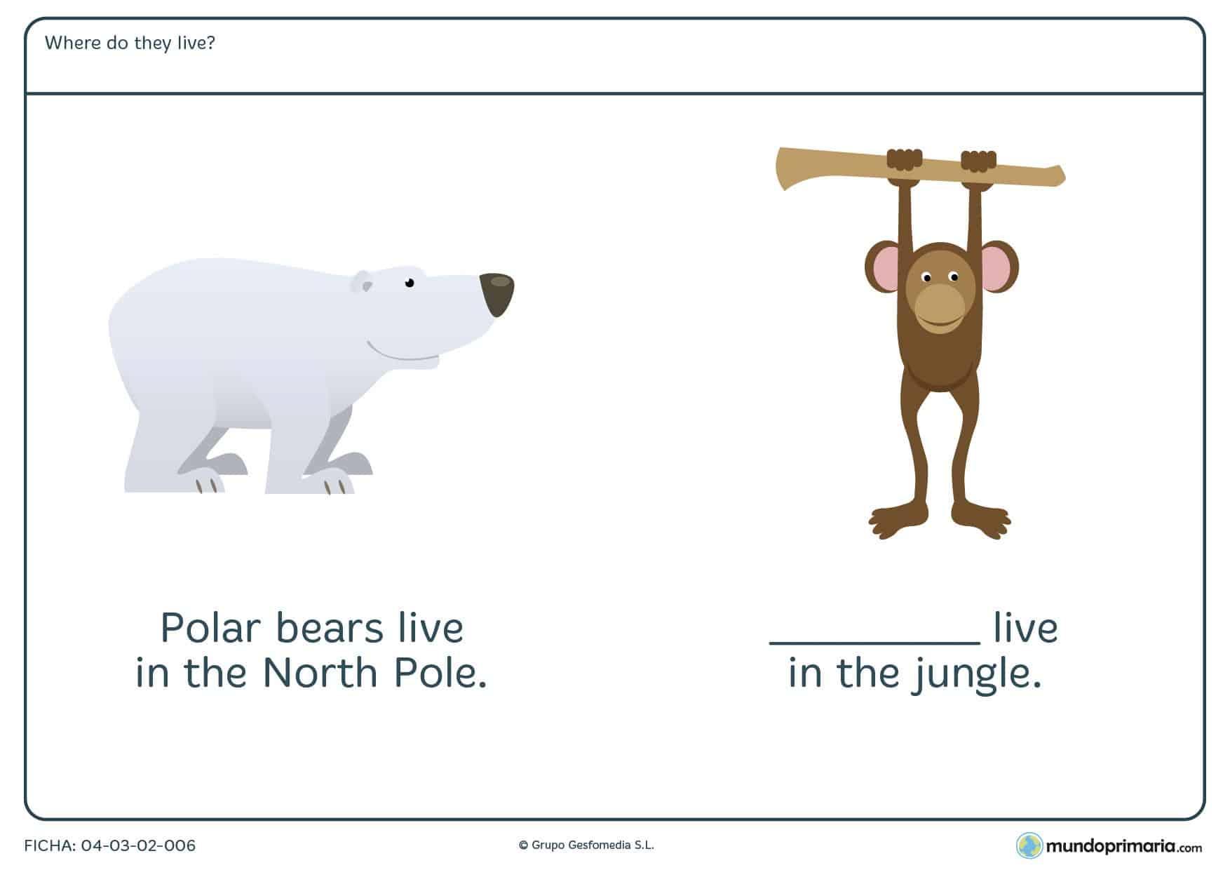 Escribe donde vive cada animal en inglés para aprender vocabulario