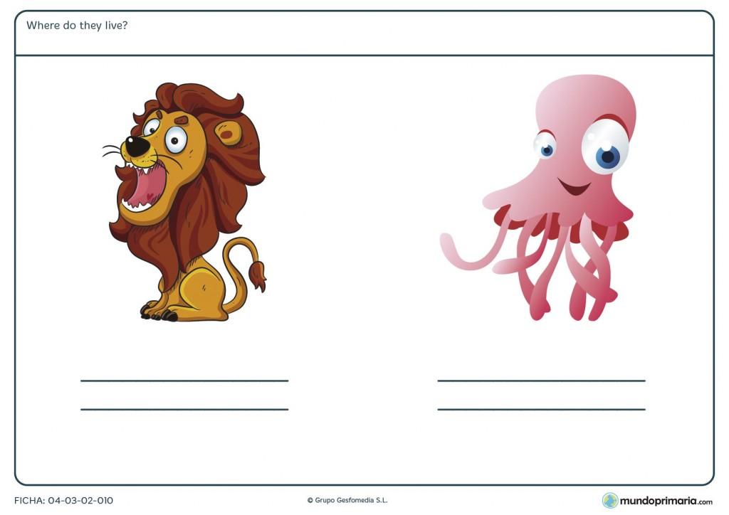 ¿En qué parte viven el león y el pulpo? Responde en inglés para 2º