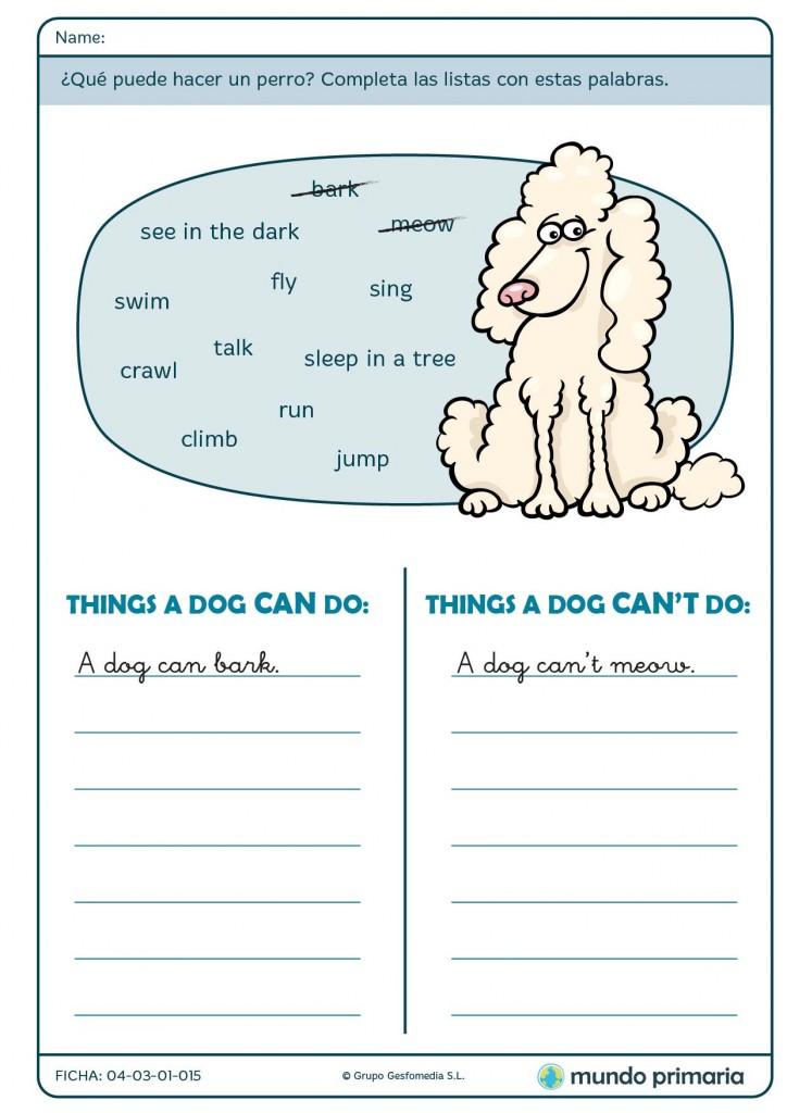 Responde a las acciones que puede realizar un perro para Primaria