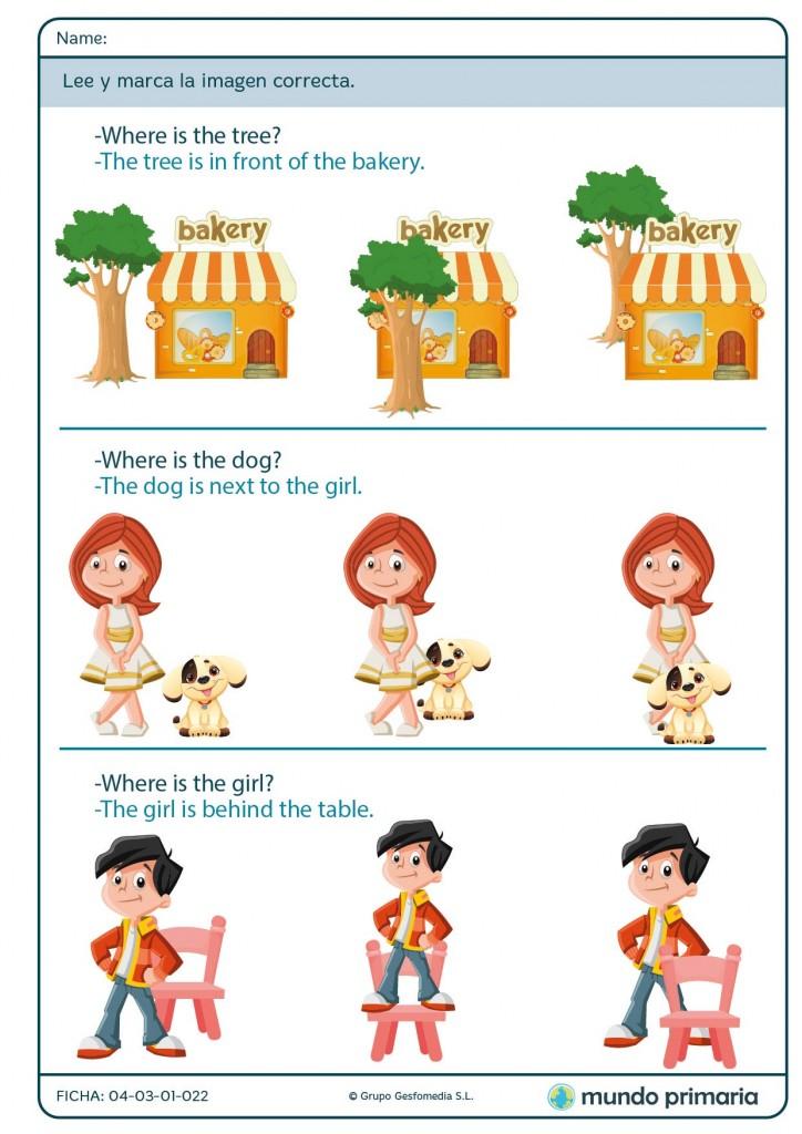 Rodea la imagen correcta sobre preposiciones en inglés para Primaria