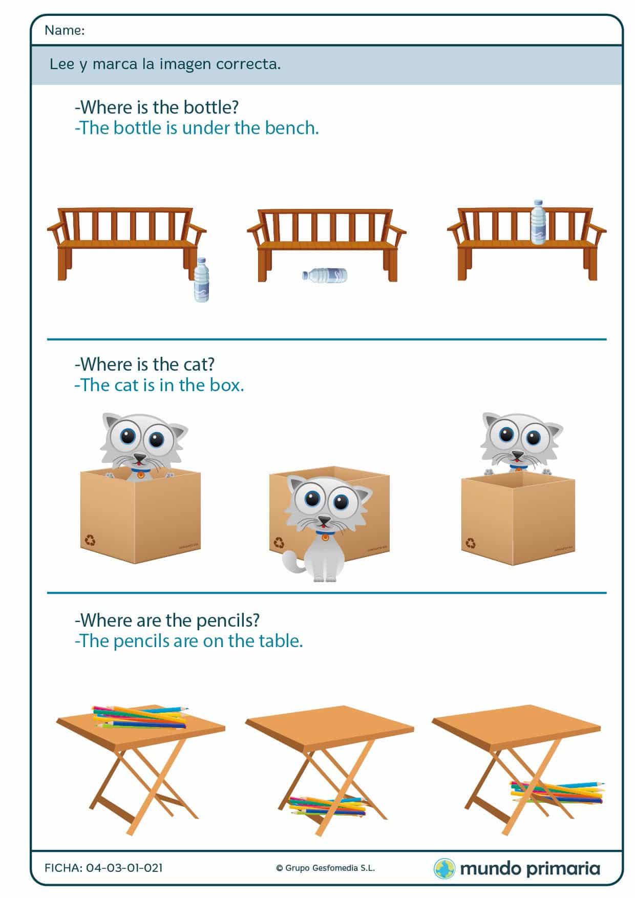 Ficha de preposiciones con objetos y animales para niños de Primaria