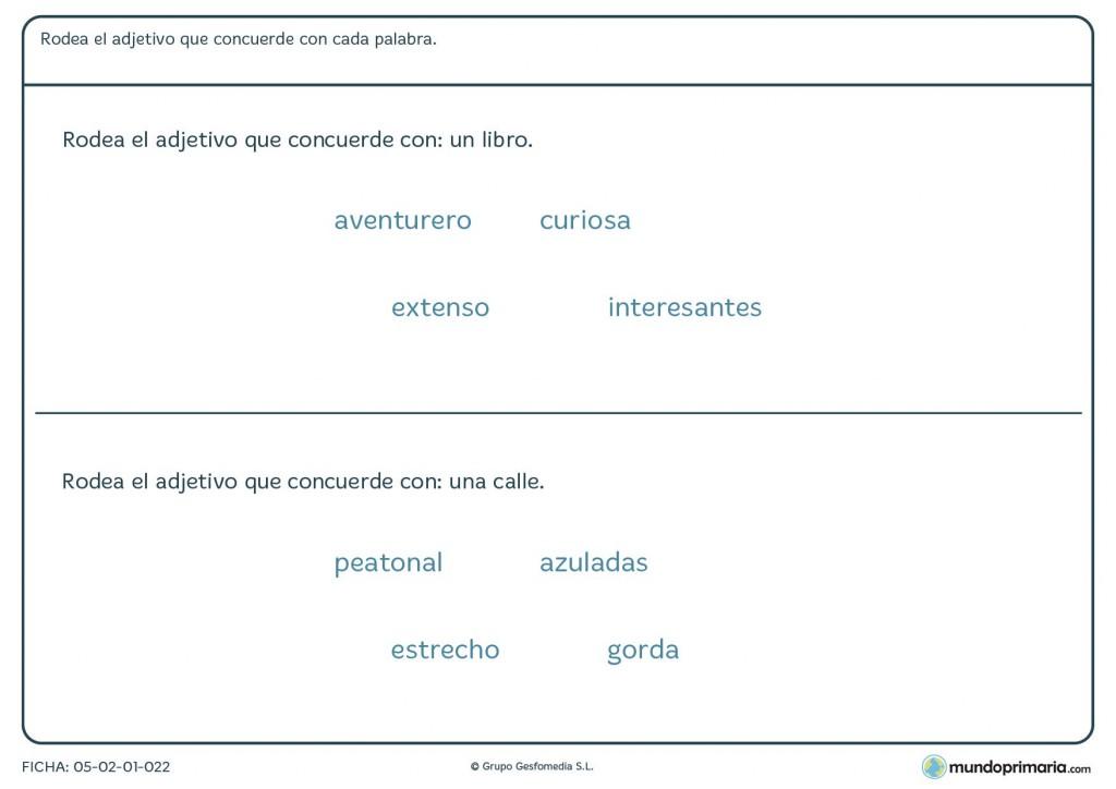 Ficha de lenguaje para alumnos de 3º curso de Primaria sobre adjetivos