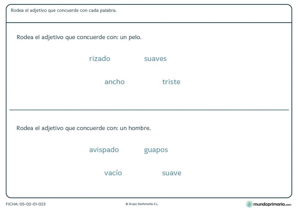 Ficha de adjetivos que coincidan con palabras para niños de Primaria