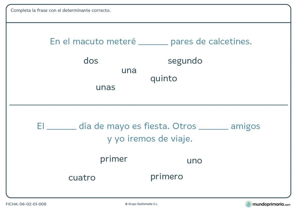 Ficha de determinantes numerales para alumnos de 4º de Primaria