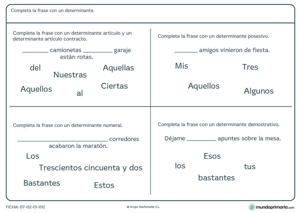 Ficha de determinantes artículos, numerales, posesivos y demostrativos