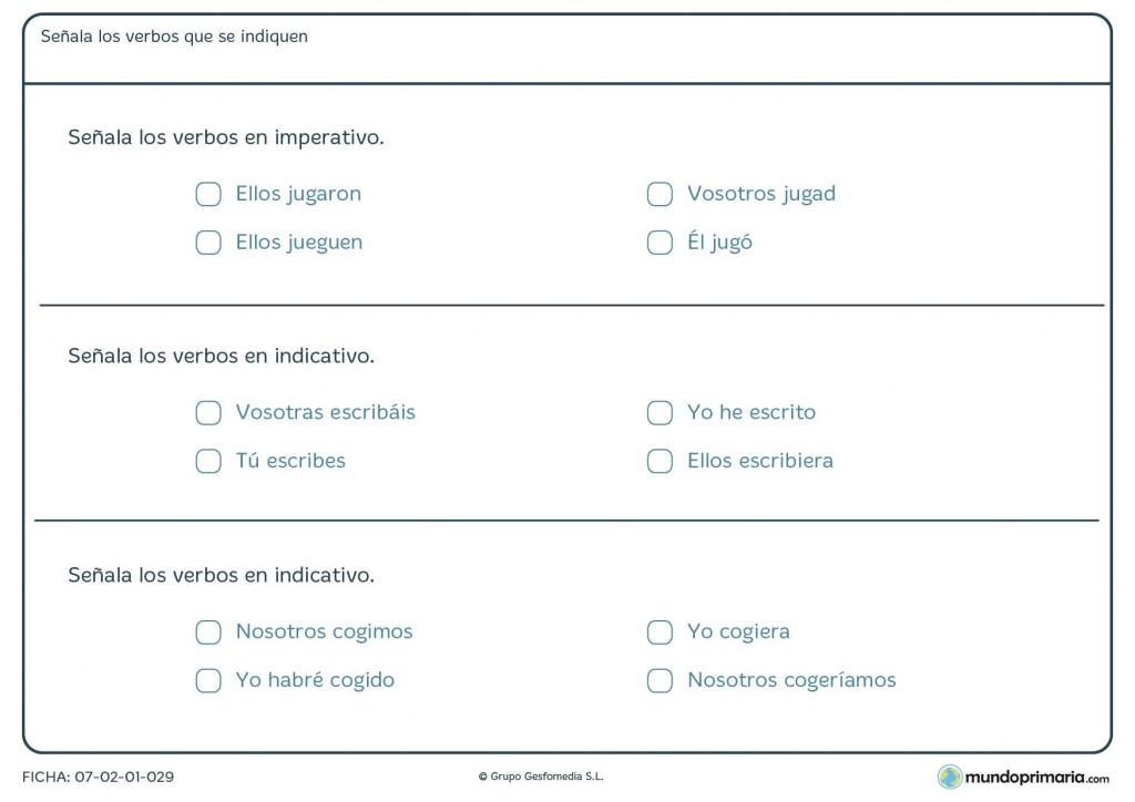Ficha de indicar los verbos que se piden en el enunciado de la ficha
