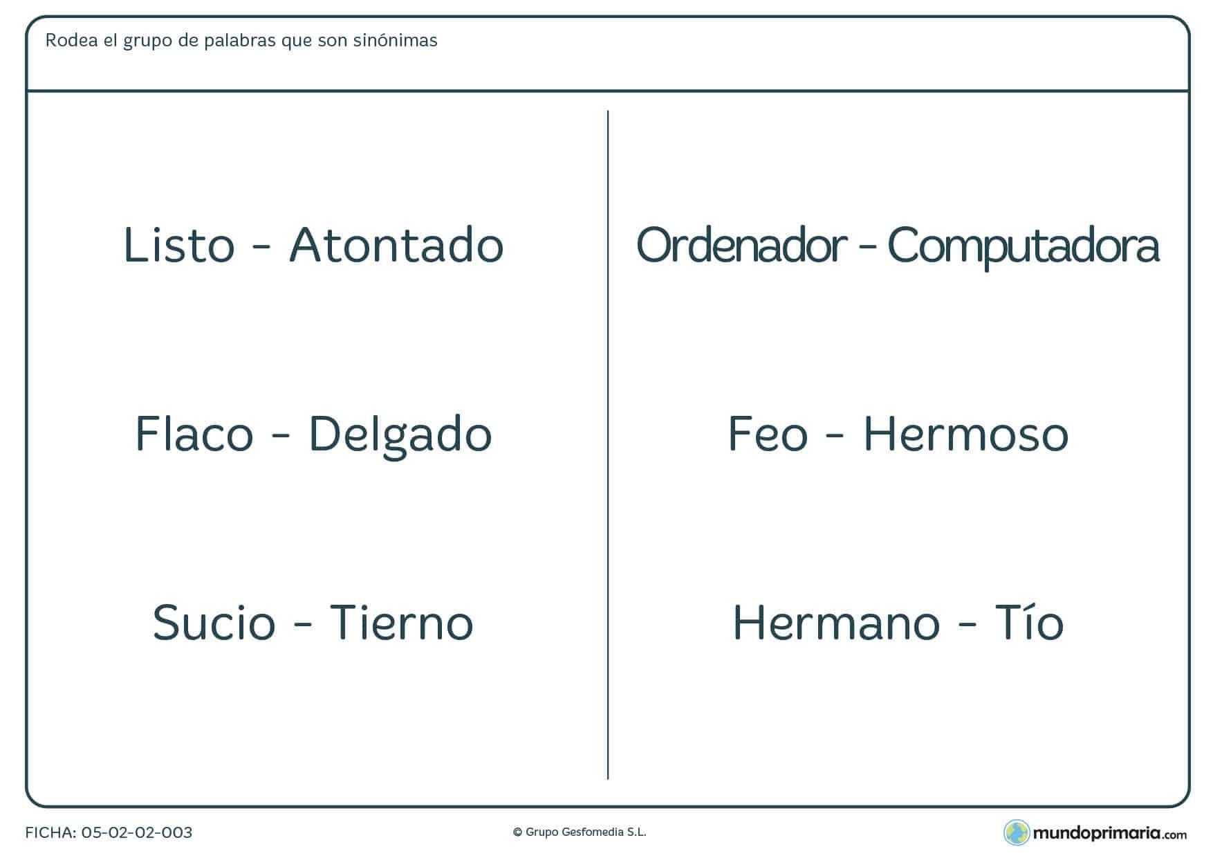 Ejercicios vocabulario lengua para tercero primaria