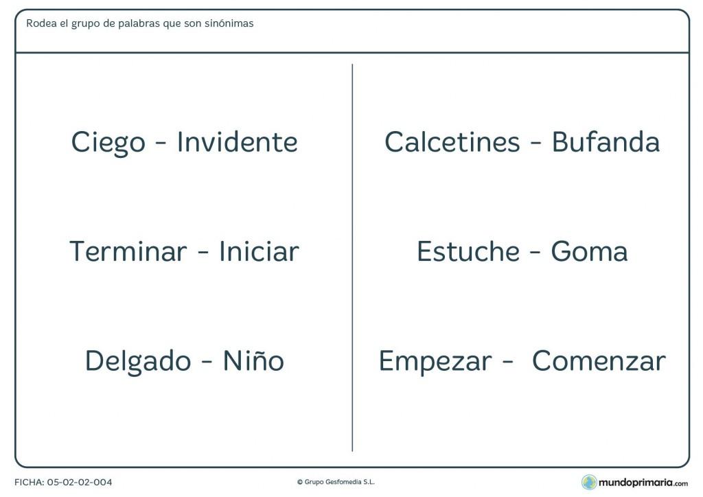 Ficha para rodear el grupo de palabras que son sinónimas para Primaria