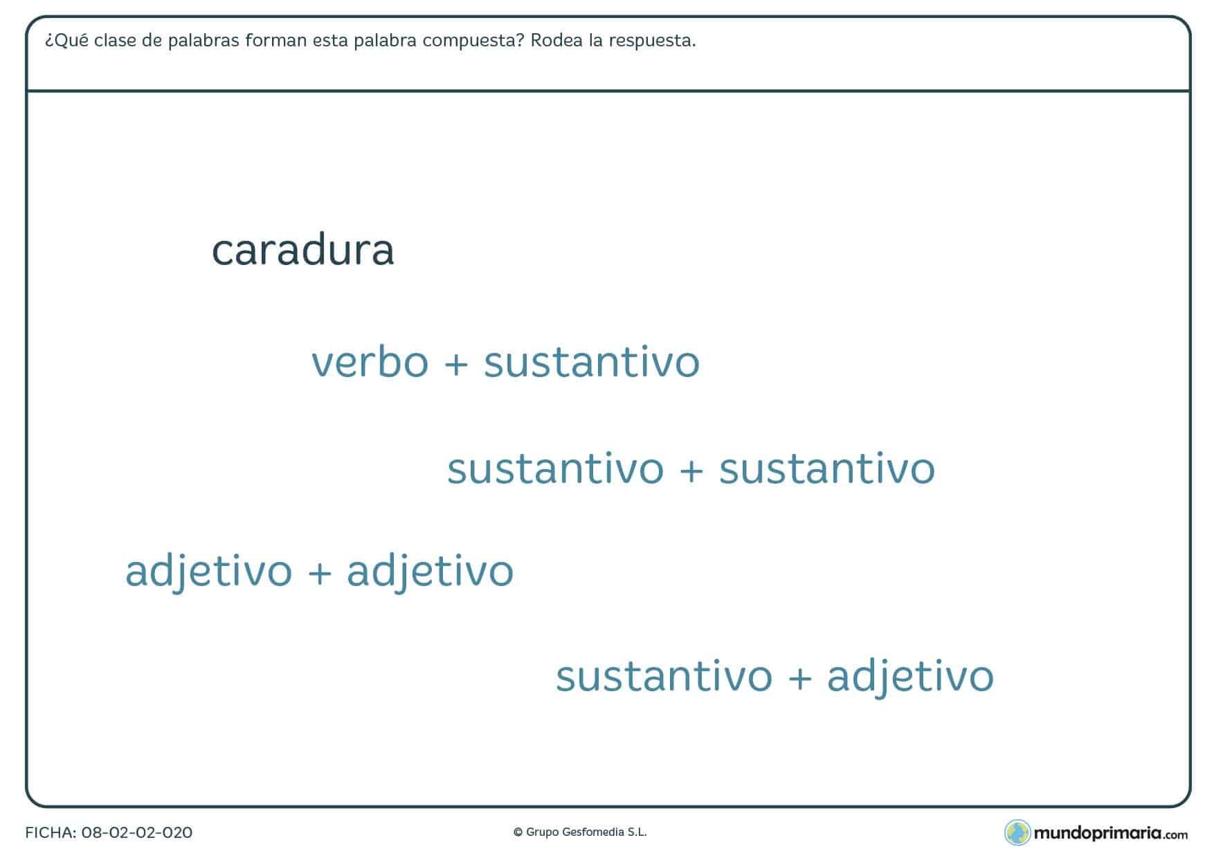 Ficha de lenguaje de composición por verbo, sustantivo o adjetivo
