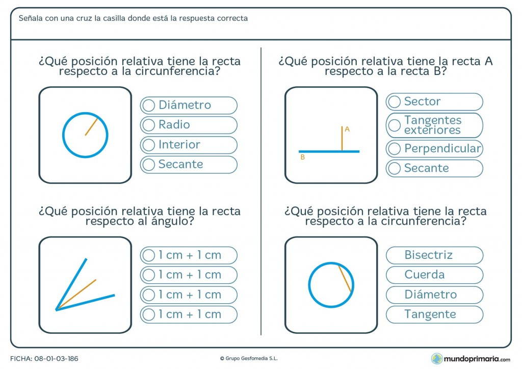 Ficha de posición relativa en ángulos, circunferencias y más para 6º