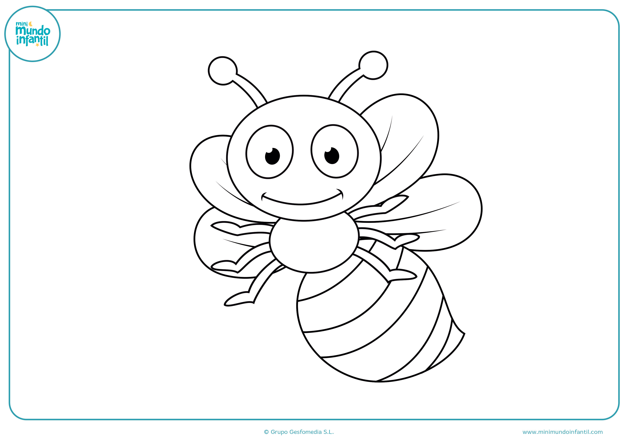 Dibujos de insectos para colorear - Mundo Primaria