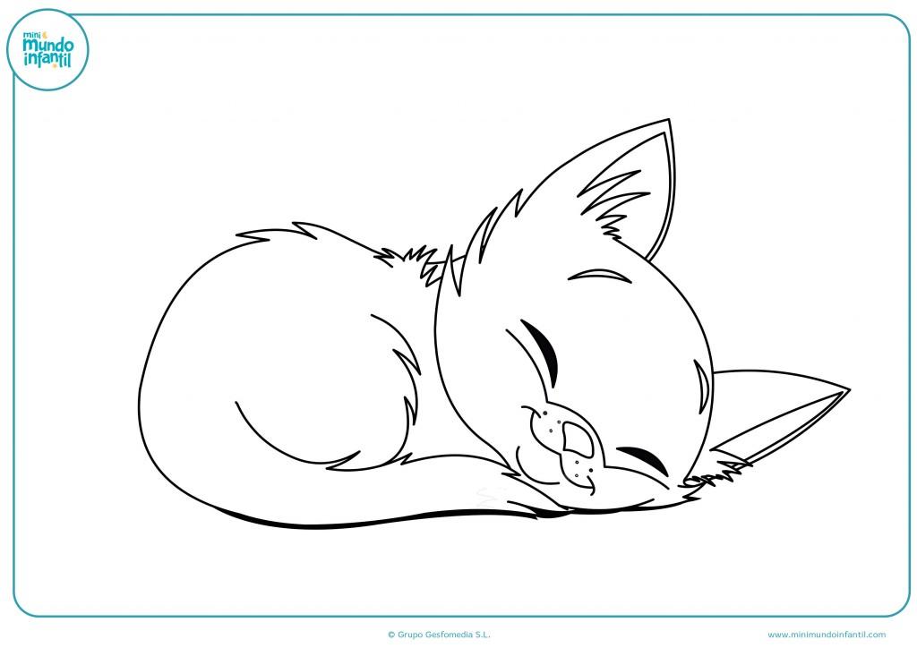 Imagen coloreable de un gato dormido para niños infantiles