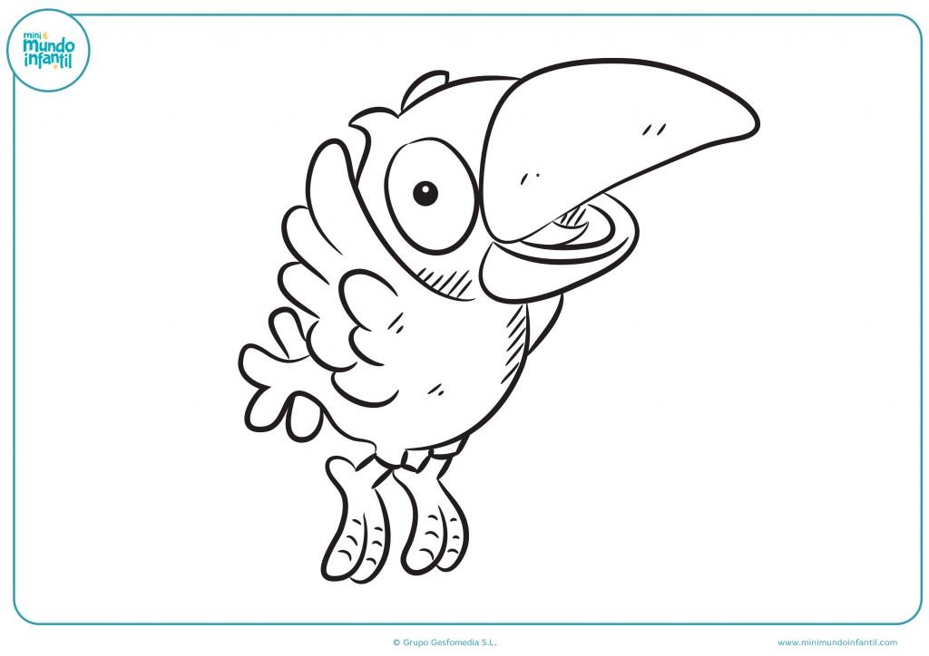Colorea el dibujo del loro volando para niños infantil