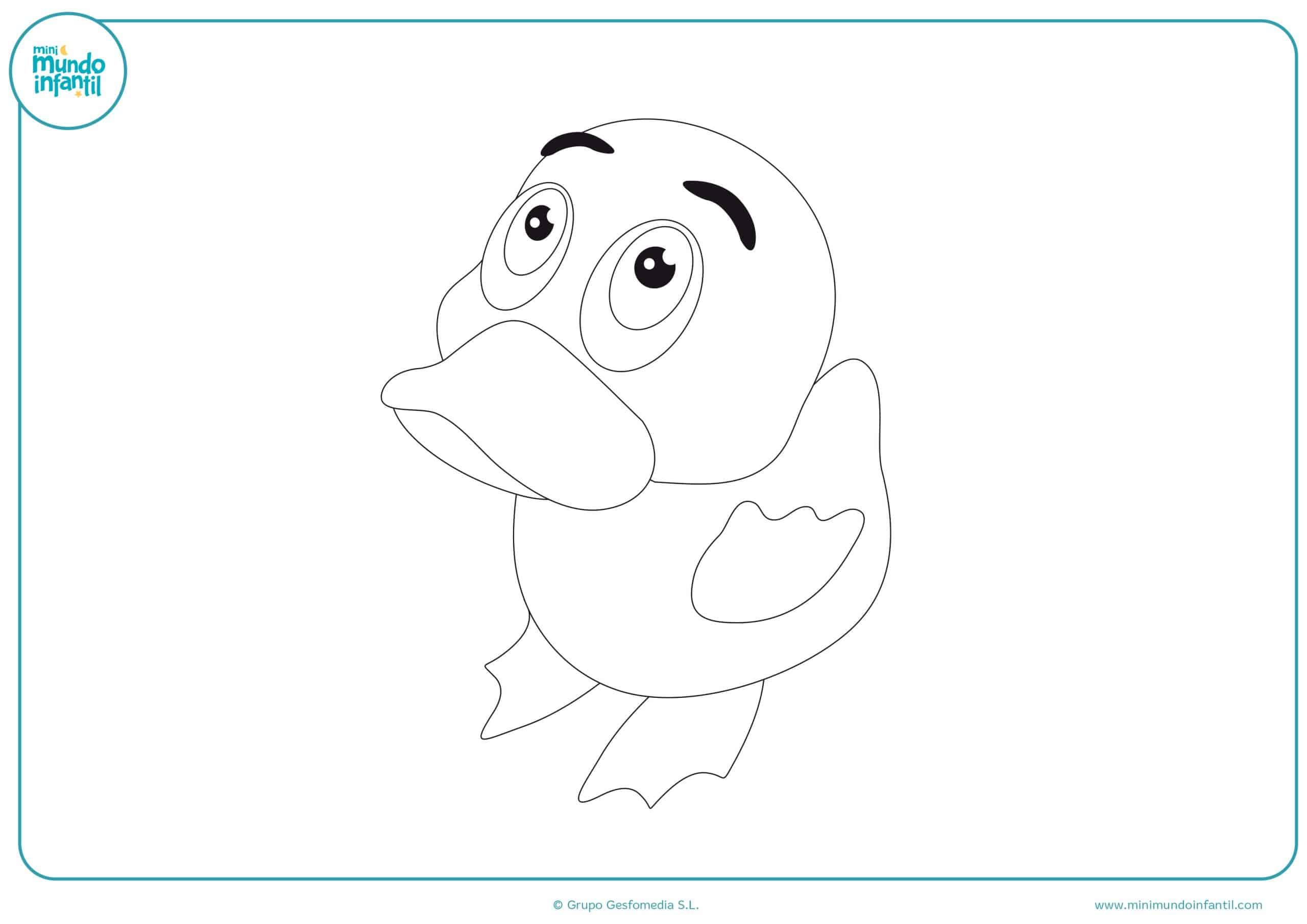 Dibujos para colorear animales aves