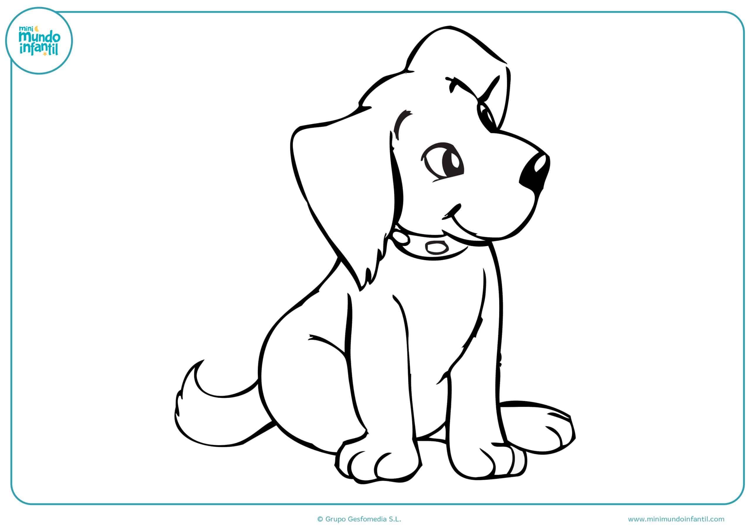 Perros colorear dibujos