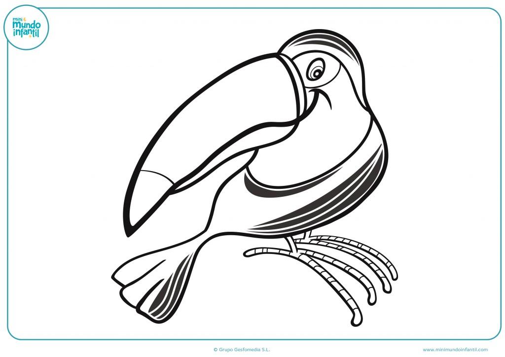 Dibujo de un tucán de plumaje negro para colorear y pintar