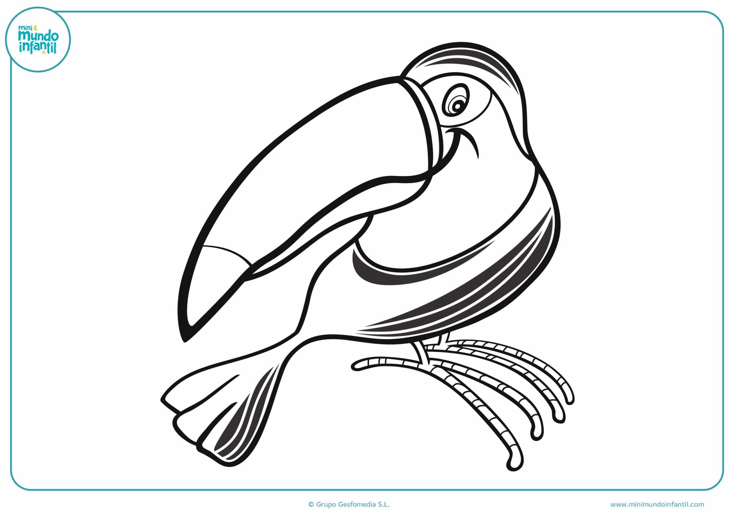 Pintar NiÑos Del Mundo: Dibujos De Aves Para Colorear