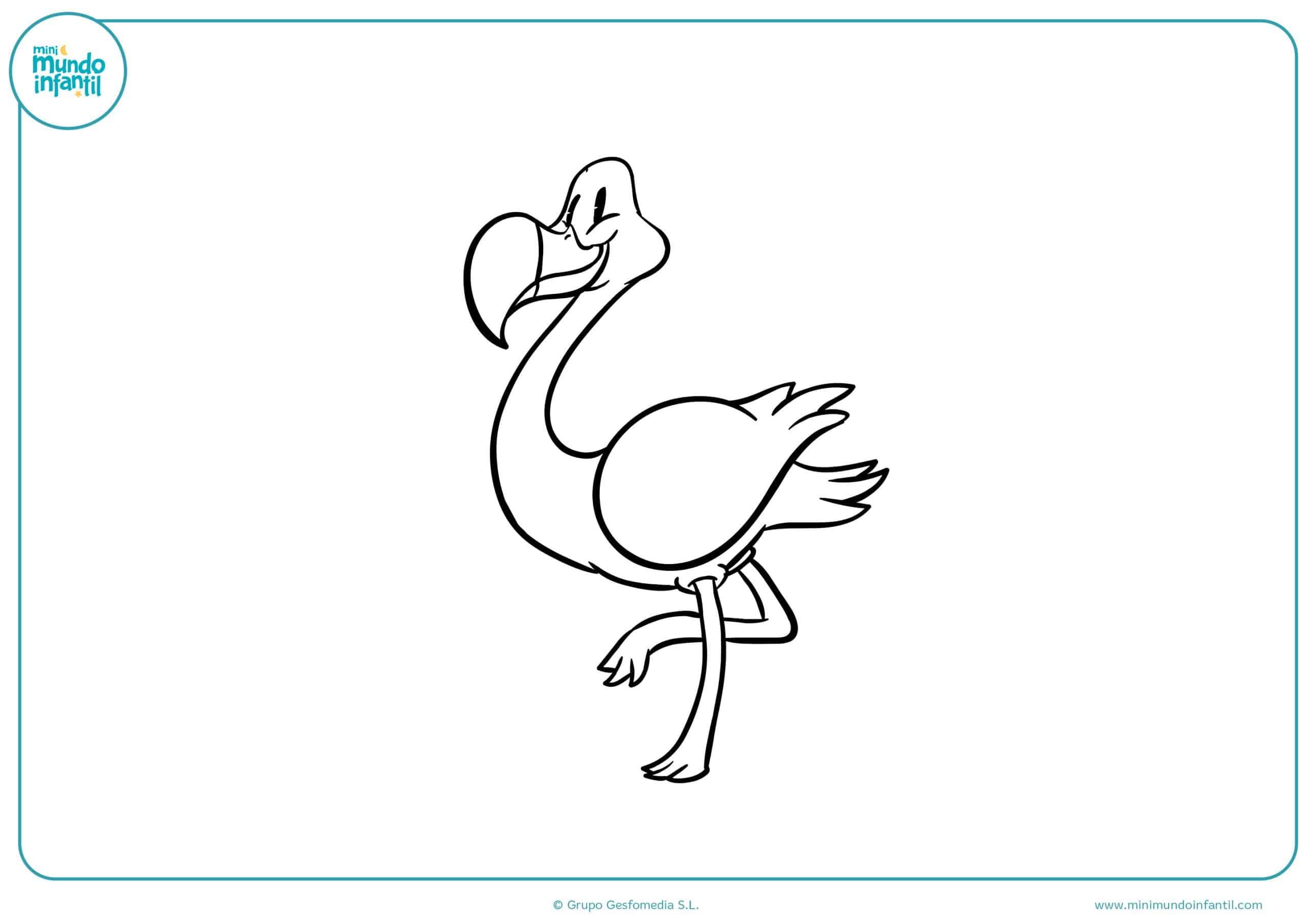 Dibujos colorear aves
