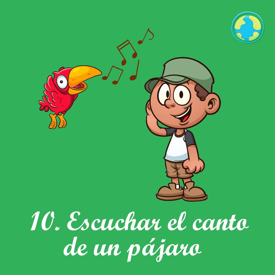 10-Escuchar canto pajaro