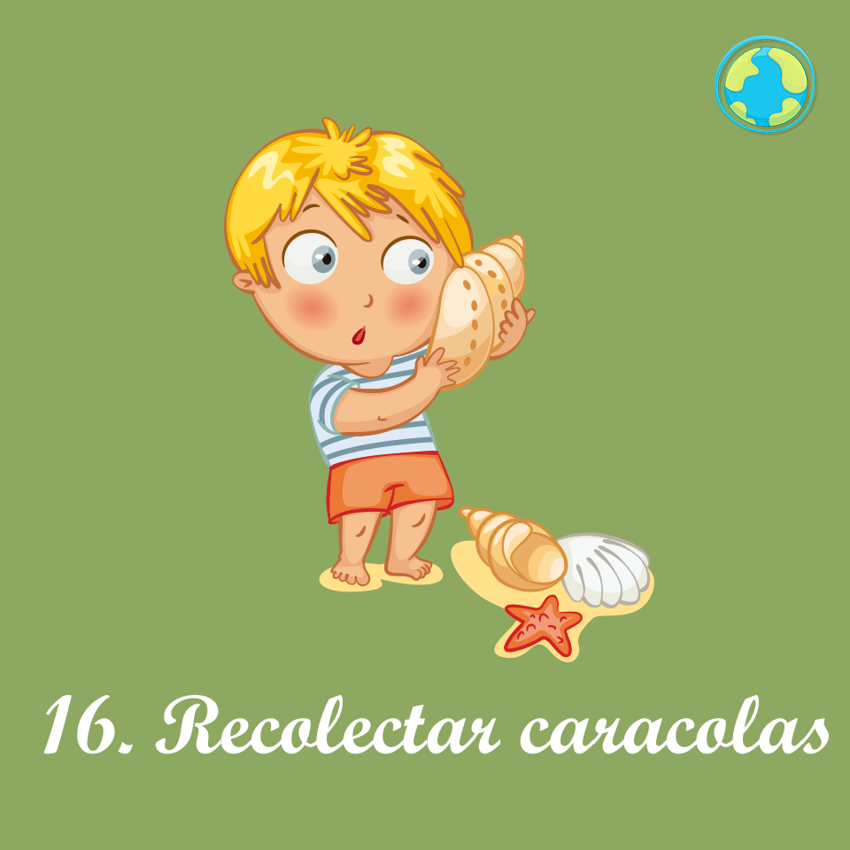 16-Recolectar conchas