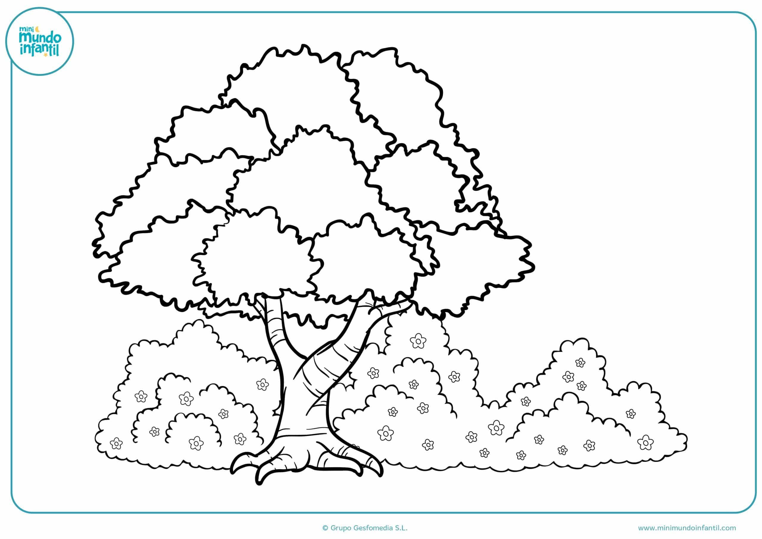 Dibujos para colorear estaciones año