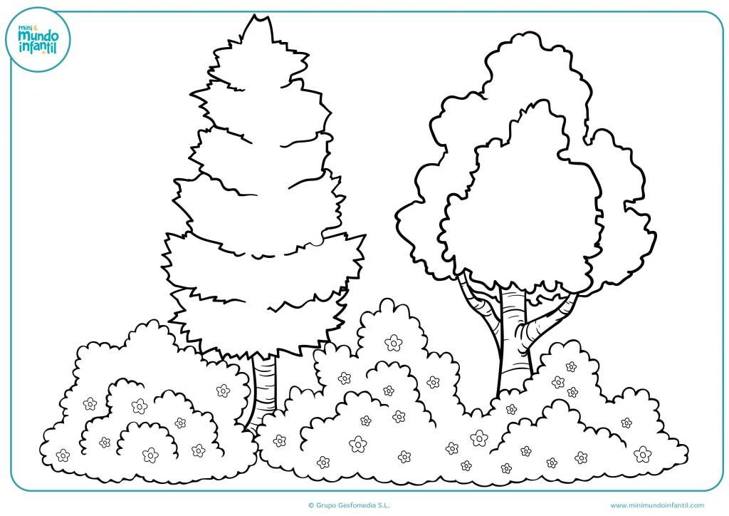 Pinta el dibujo de unos árboles y arbustos con flores con colores