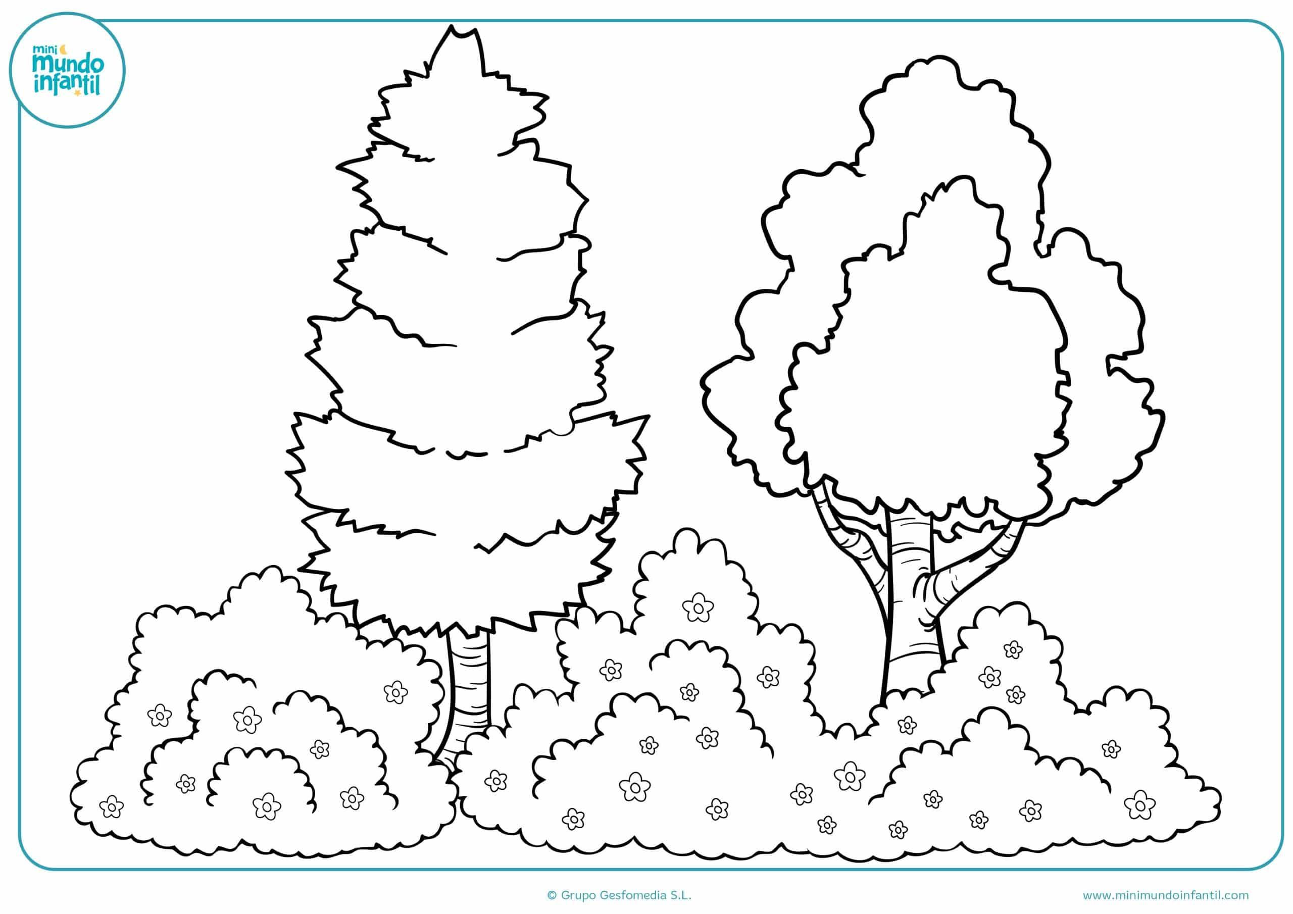 Dibujos colorear estaciones año