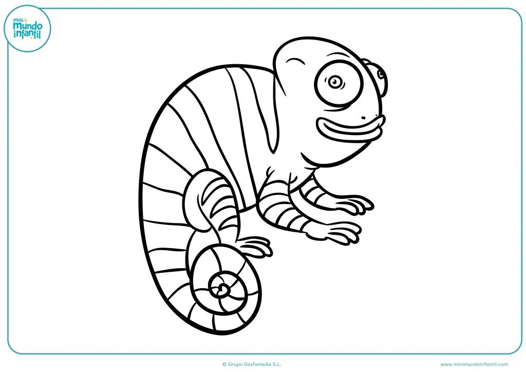 Colorea el camaleón de cola larga con rayas y ojos grandes