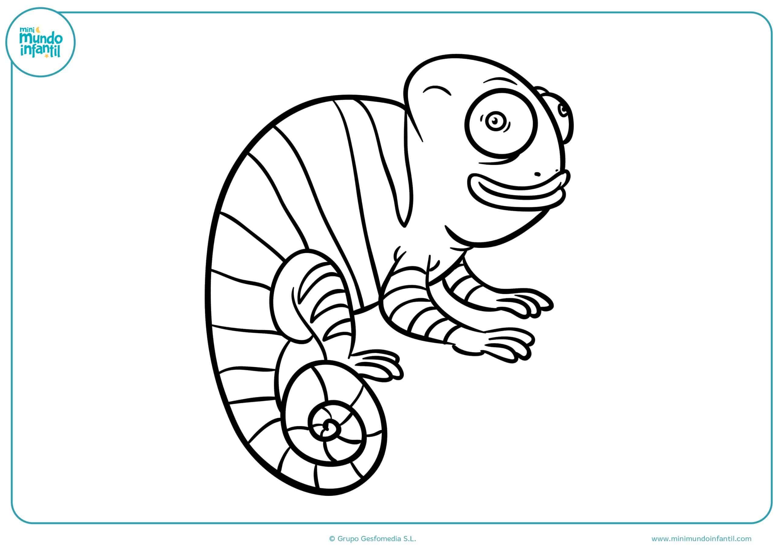 Dibujos para colorear animales salvajes