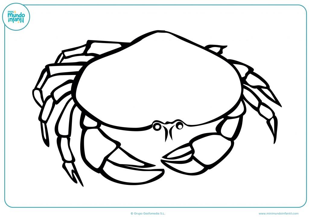Descarga el dibujo de un cangrejo grande y píntalo
