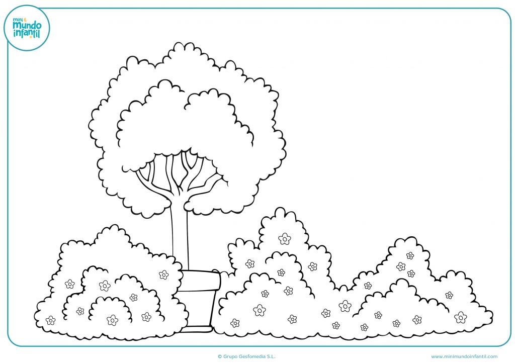 Pinta con colores este jardín con árboles y arbustos
