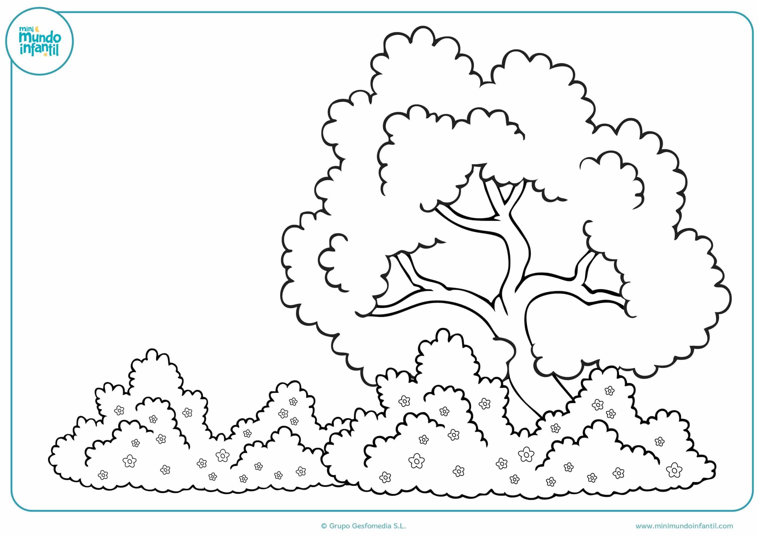 Colorear dibujos estaciones de año niños