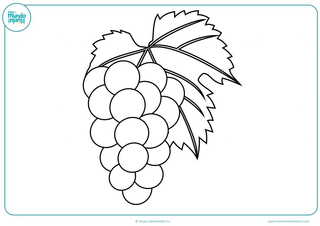 Rellena con color el dibujo de las uvas