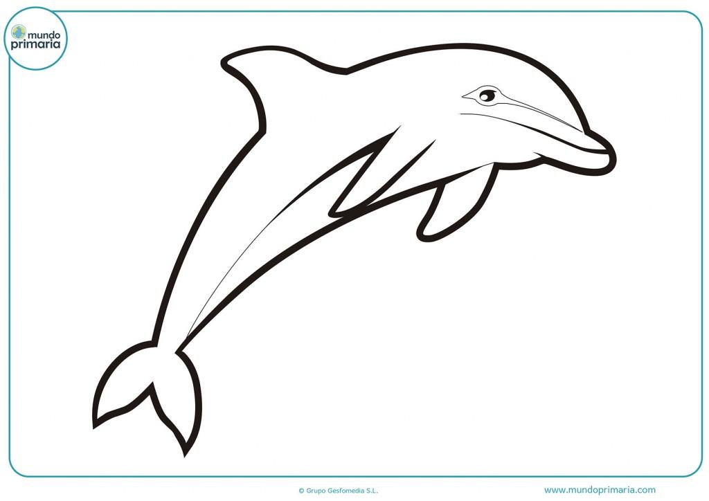 Colorea el dibujo del delfin blanco para completarlo