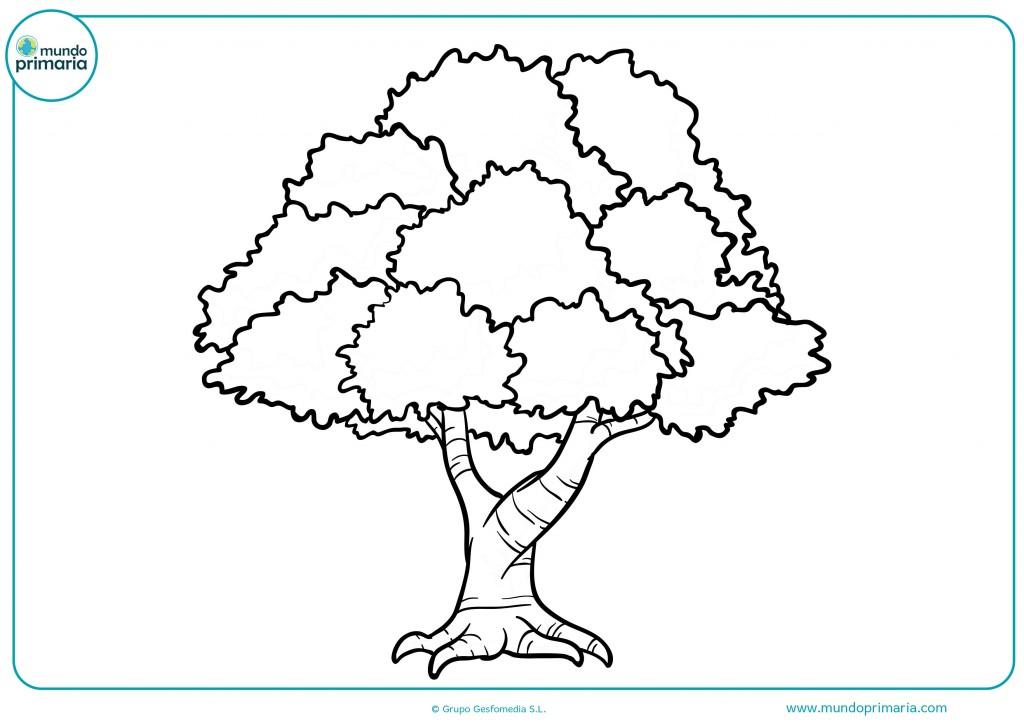 Colorear el árbol y sus ramas y tronco con ceras marrón
