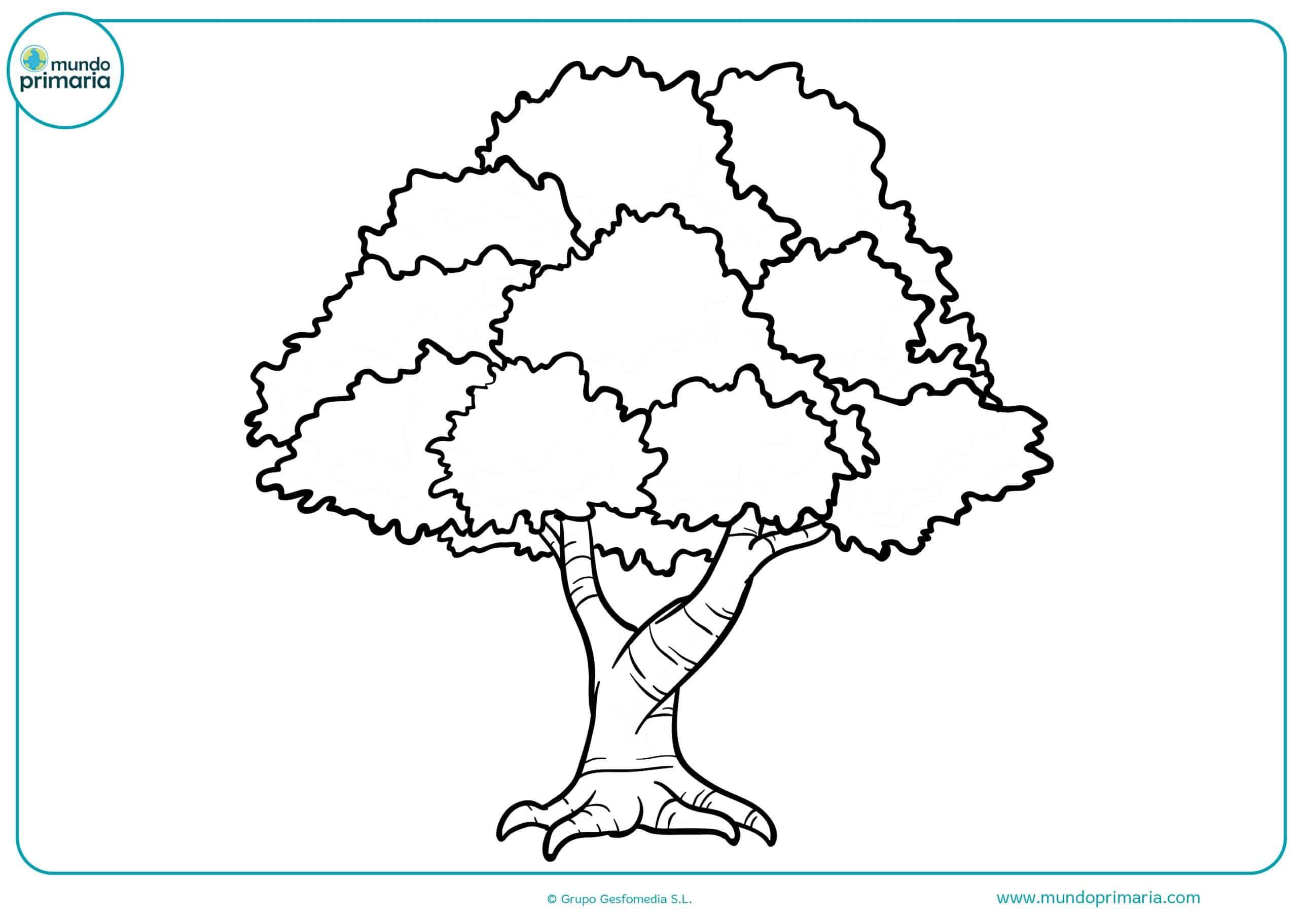 Dibujos de árboles para colorear - Mundo Primaria