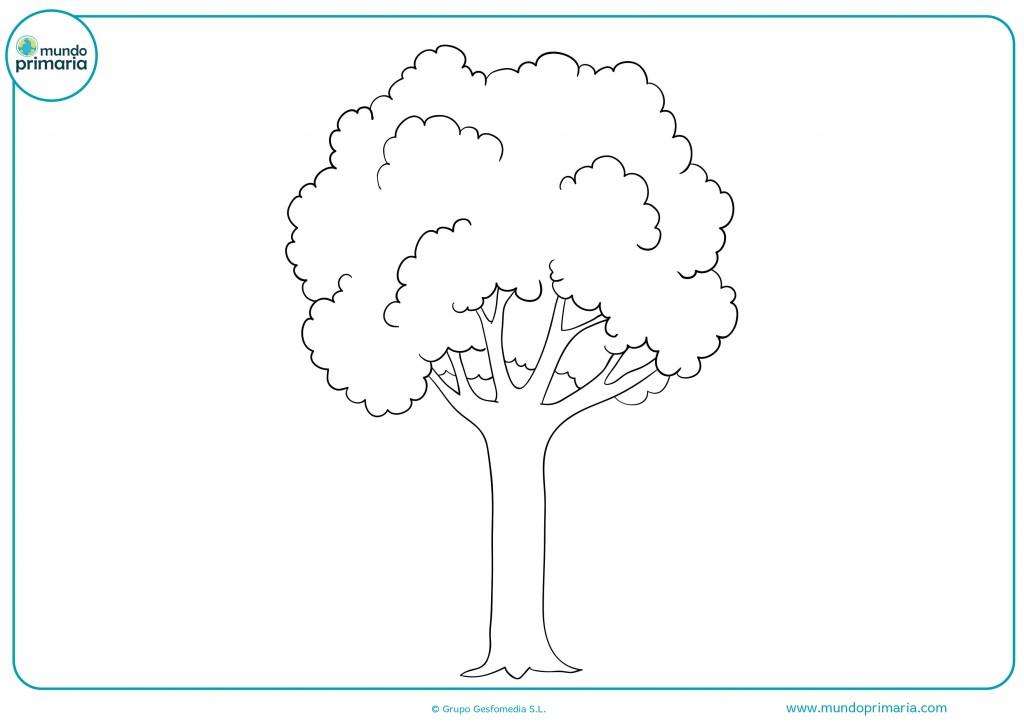 Pinta con ceras verdes este altísimo árbol